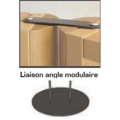 Kit de liaison orientable